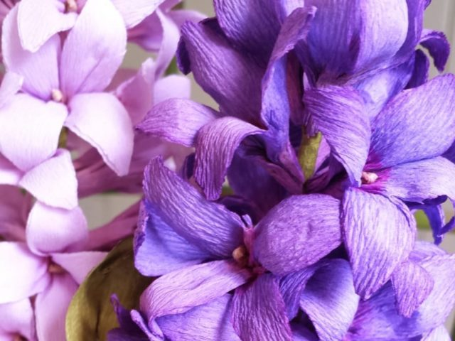 Fiori in Atelier – il giacinto con Rosanna Frapporti