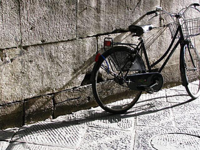Biciclette Ritrovate 2014